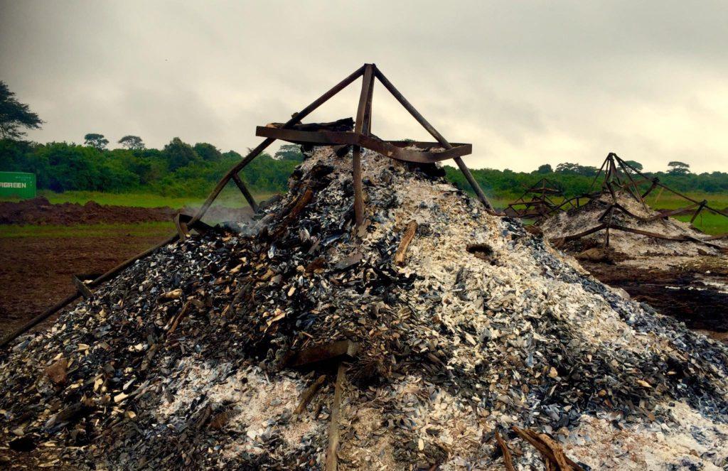 burn site1