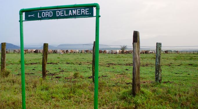 Lord Delamere: The Godfather of Kenya's Agricultural Economy